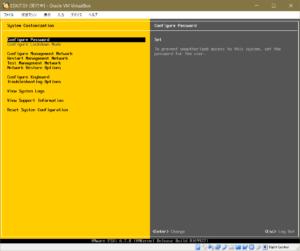 ESXi System Customize Configure Password